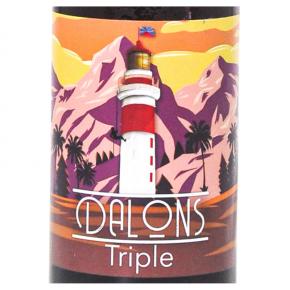 Bière Dalons Triple