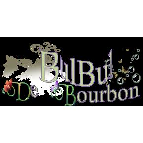 Bulbul De Bourbon